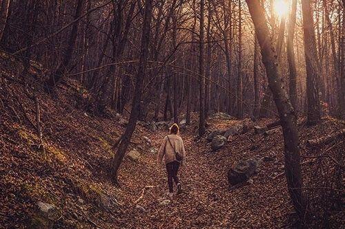 Un paseo diario como ejercicio pre embarazo